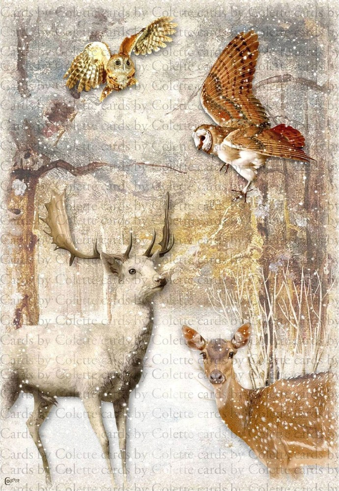 Winter Owls and Deer Digital Collage Greeting Card2004