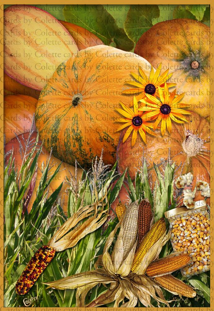 Fall Pumpkins and Corn Digital Collage Greeting Card3000