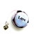 Tape Measure Word Stones Small Retractable Measauring Tape