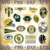 16 Green Bay Packers svg, Packers Team svg, Packers Svg, Packers Cricut, Packers