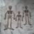 Skeletons*