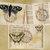 Butterflies Love Flowers Vintage Digital Junk Journal Kit Printable