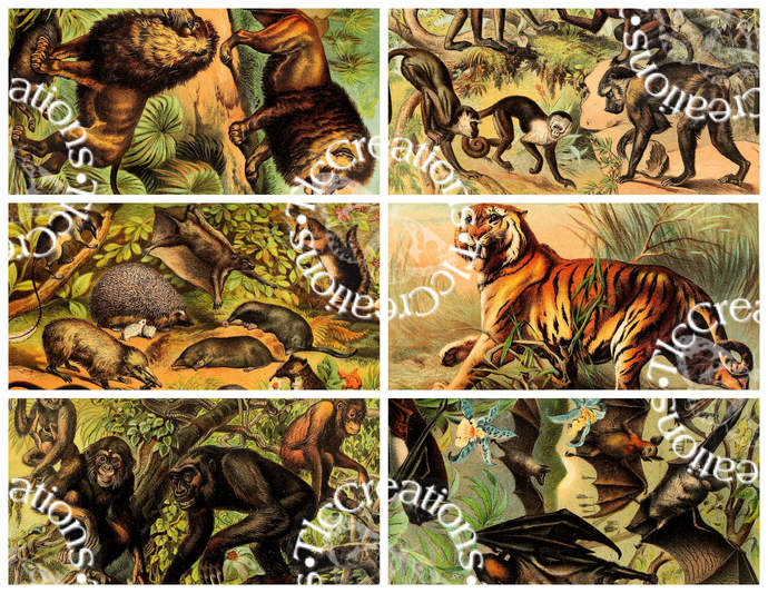 Vintage Animals in Nature Set 1 Printable Cut Apart Sheets ATC Cards Journal