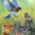 Birds In Gods Hands Cross Stitch Pattern***LOOK***X***INSTANT DOWNLOAD***
