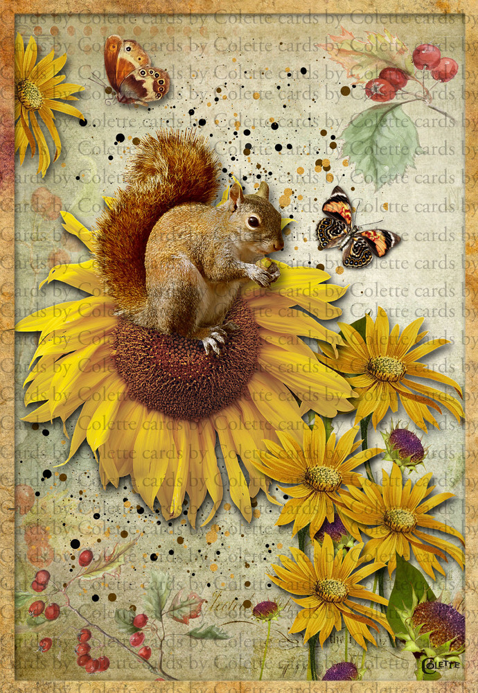 Squirrel and Sunflowers Digital Collage Greeting Card3033
