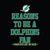Reasons to be a Miami Dolphins Fan Complete List on Back funny svg, Miami