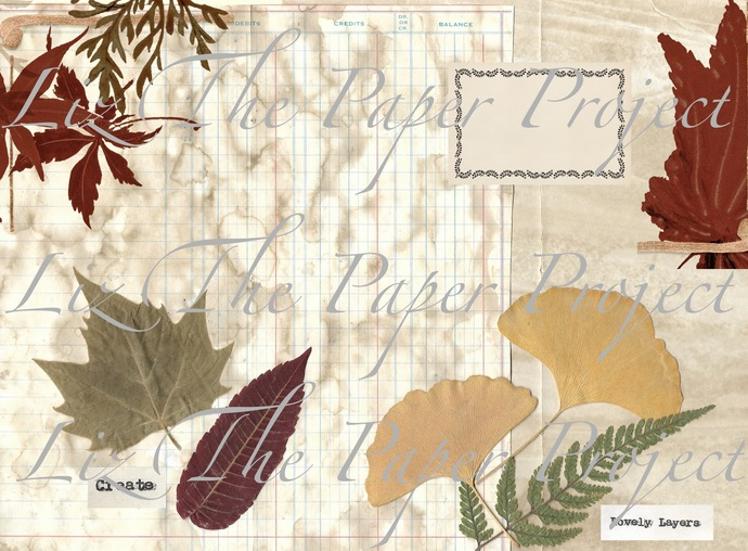 Autumn / Fall Vibes Digital Download / Printable Paper