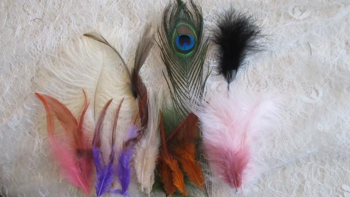 Bag of Luxury Feathers
