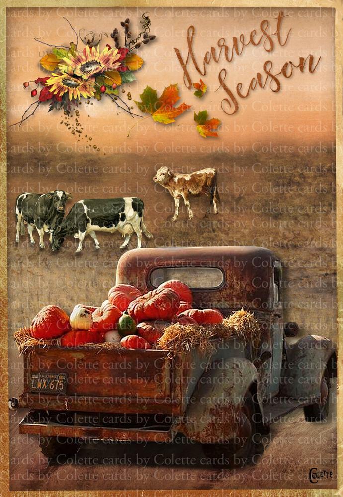 Harvest Season Digital Collage Greeting Card3039