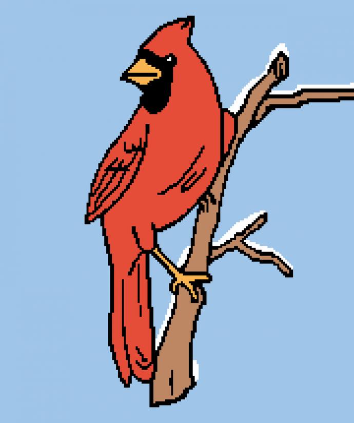 Cardinal in Snow, with bonus Spring Cardinal