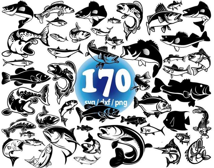 Download Fish Svg Fishing Svg Ocean Creatures Svg By Clipartstore On Zibbet
