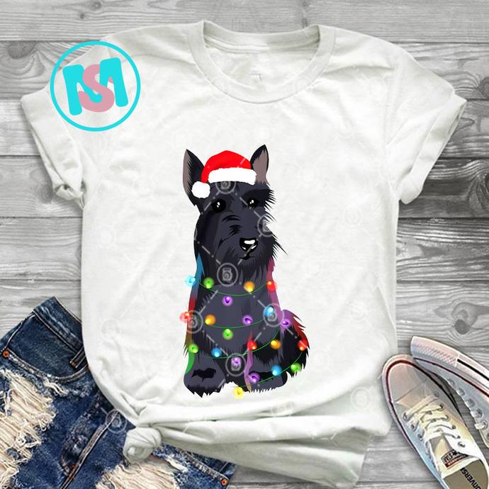 Scottish Terrier Christmas Lights PNG, Scottish Terrier PNG, Dog PNG, Santa Hat
