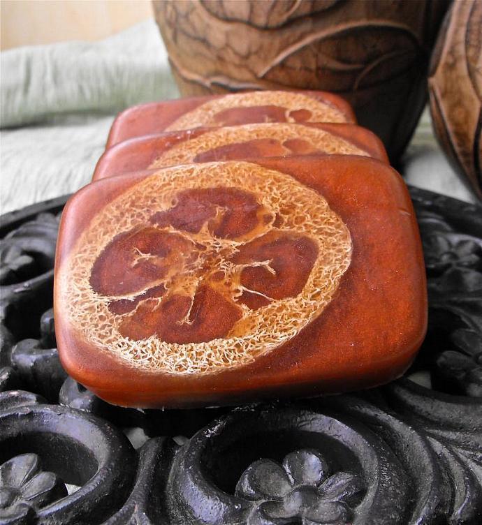 Cinnamon Ginger  Loofa Soap