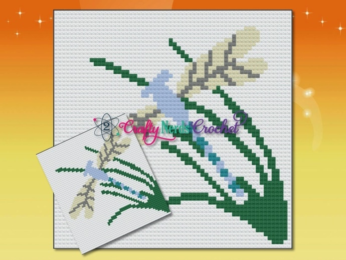 DragonFly In Grass Pillow Pattern Graph With Single Crochet Written