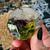 B grade Botanical Tarot Kitten Skull with The Empress Tarot, amethyst and double