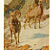 Rocky Mountain Sheep 1912 Antique Carl Rungius Western Wildlife Natural History