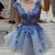 Blue Cap Sleeves Mini 3D Flowers Appliques  Prom Dress, Homecoming Dresses