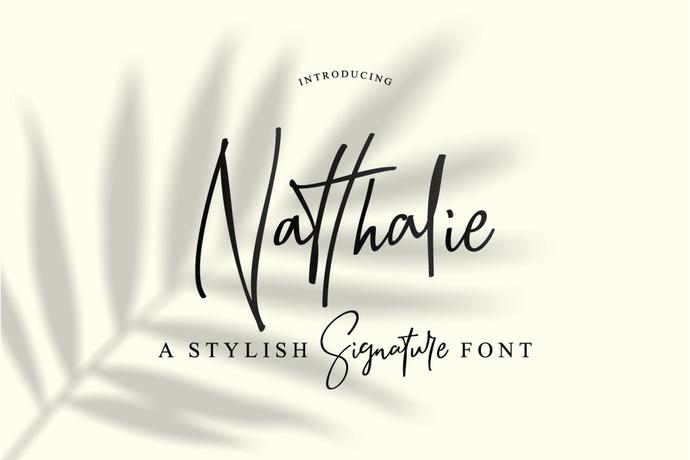 Signature Font, Handwritten Font, Wedding Font, Logotypes, Alternates, Swashes,