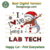 I Love Being A Lab Tech Svg, Christmas Svg, Xmas Svg, Christmas Gift, Snowman