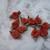 Rust Fabric Flowers*