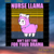 Nurse Llama Ain't Got Time For You Drama, Trending Svg, Llama Svg, Llama
