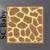 Giraffe Skin / Hide SC, Graph + written line by line color coded block