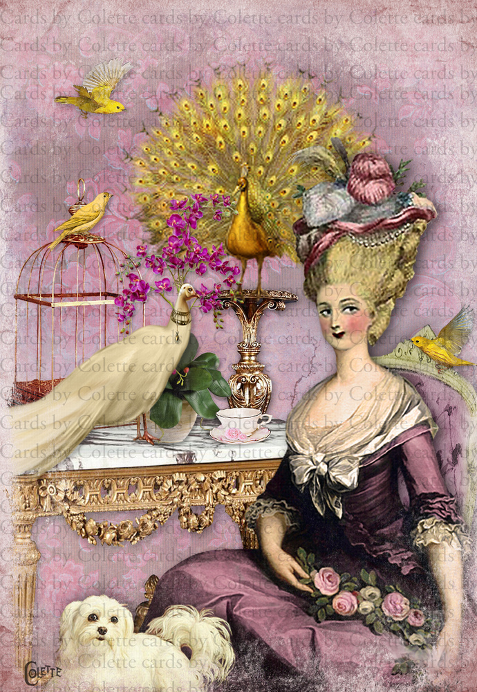 Marie In Her Aviary Digital Collage Greeting Card3219