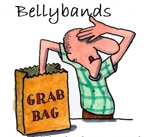 GRAB BAG-IN STOCK BELLYBANDS-PRINTS VARY