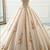 Champagne Ball Gown Tulle Wedding Dress,DR0347