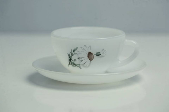 Arcopal (France) Daisy Milk Coffee Tea Cup and Saucer / Small White / Vintage