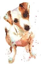 JACK RUSSELL XSTITCH PDF