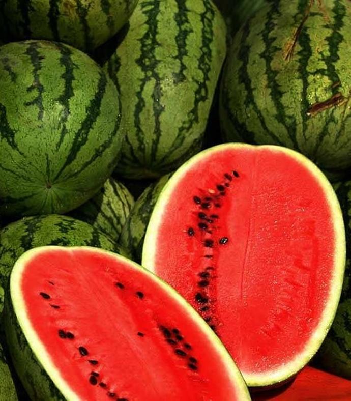 Red Watermelon Citrullus lanatus 25 Seeds