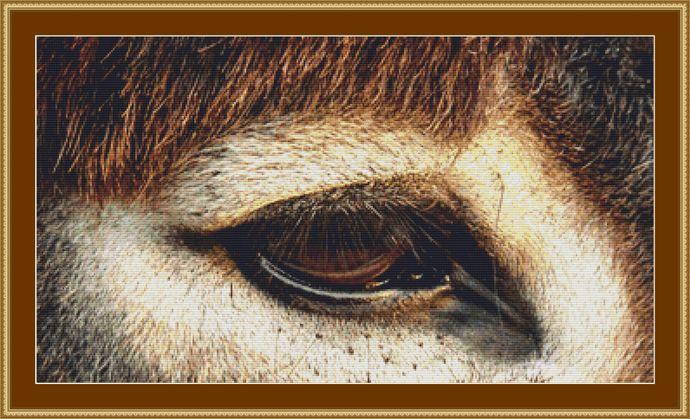 Eye Of A Donkey Cross Stitch Pattern