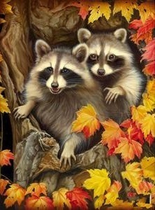 RACCOONS XSTITCH KIT