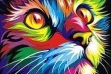 CAT (6) XSTITCH KIT