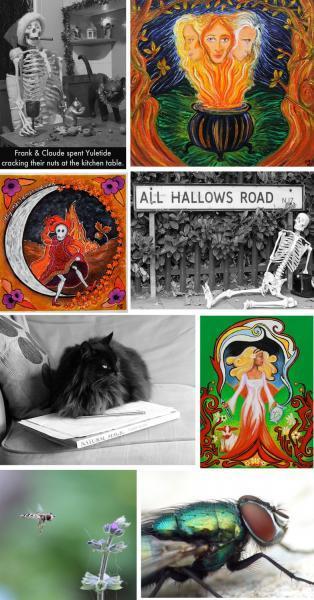 Five Catbird Craft set of blank cards