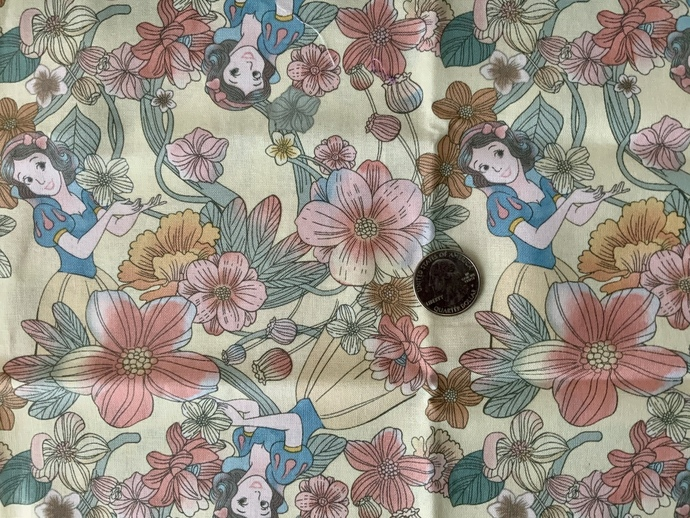 9x21 inch Disney Remnant Fabric  - ALL SALES FINAL - DESTASH - USA Only