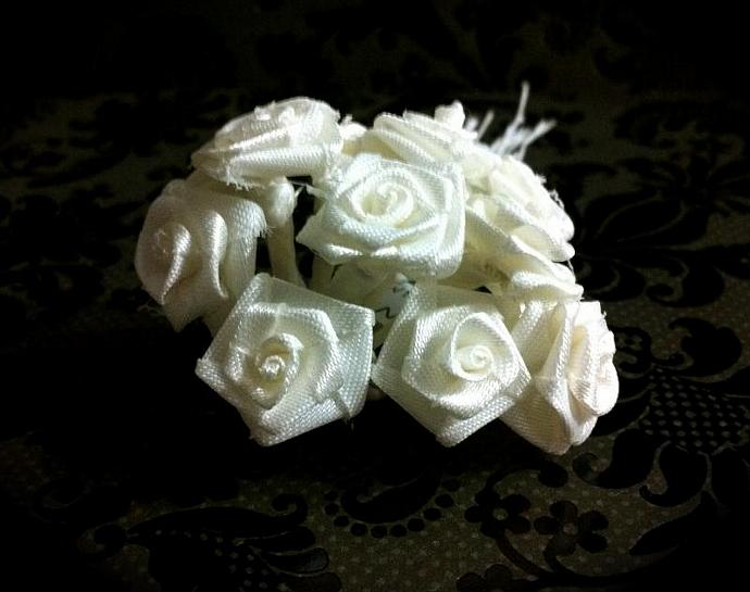 White Ribbons Roses