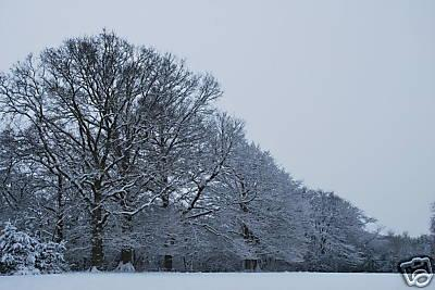 The English Countryside Winter Collection  3