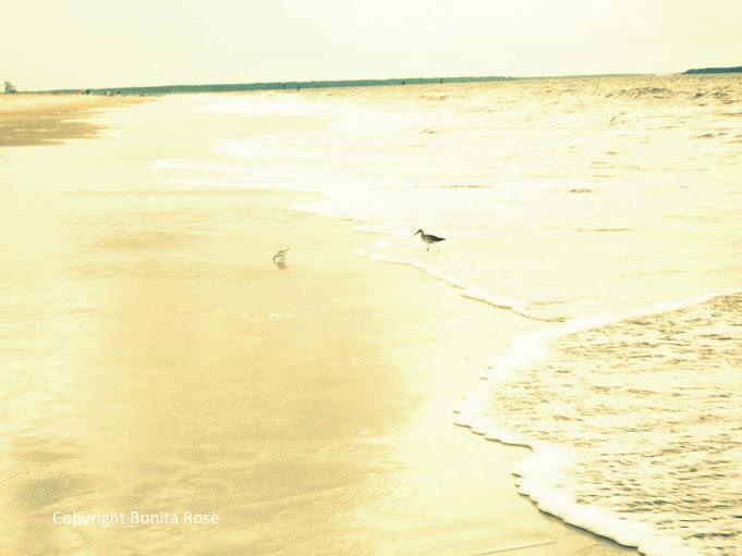 Ocean Photography - Summer Afternoon 8x10