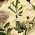 Wild Cucumber and Sedum 1892 Antique Julius Hoffman German Engraved Botanical
