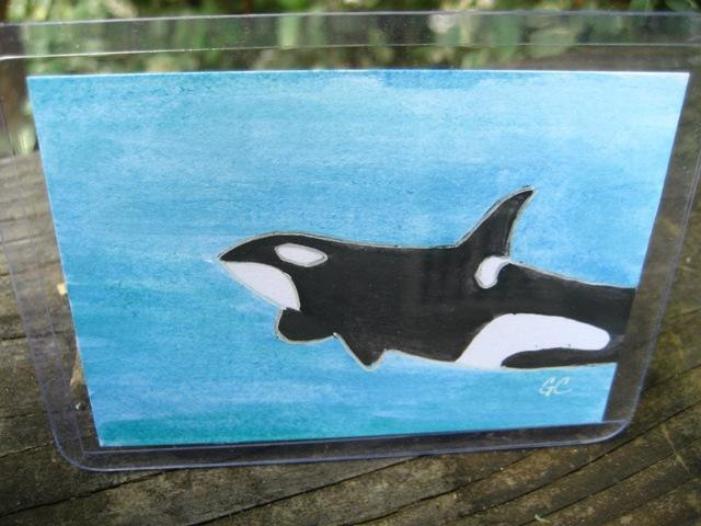 Original ACEO Watercolor Painting, Orca killer whale
