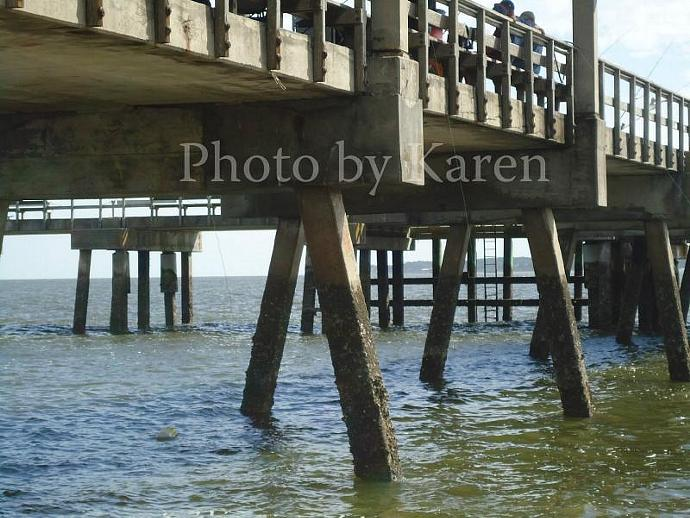 Under Tides 5 x 7 Original Photograph, other sizes available