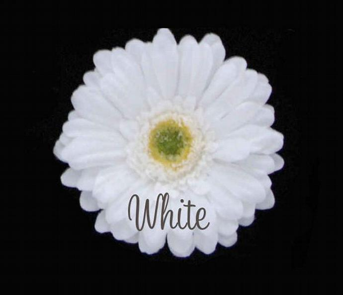 SaSSy Steal $.50pc White Premium Quality Stemless Gerbera Daisy