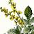 Agrimony 1882 Victorian F Edward Hulme Antique Engraved Botanical