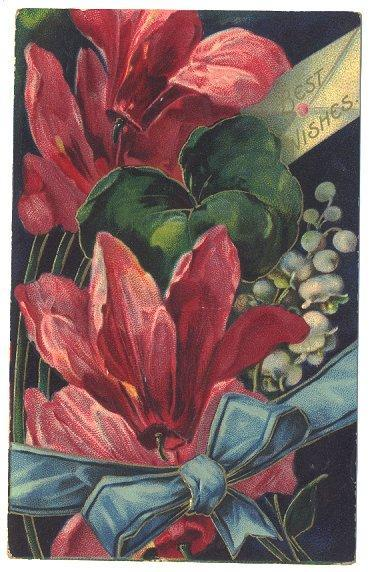 Antique Postcard Best Wishes 1900s Large Red Flowers Floral