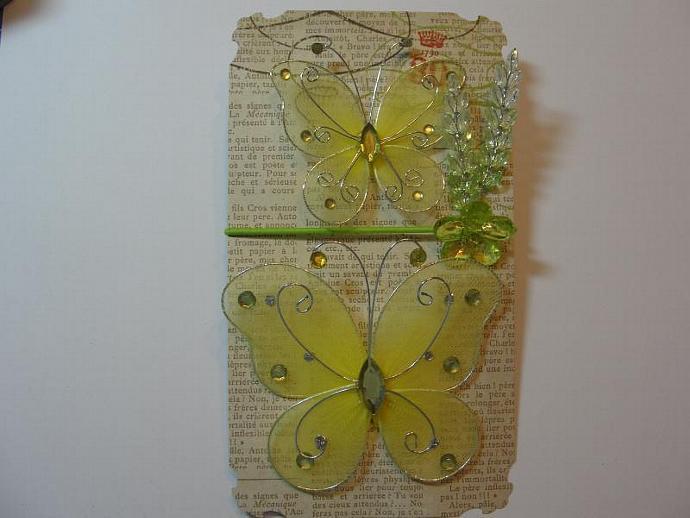 Yummy Yellow & Green Butterfly Ensemble