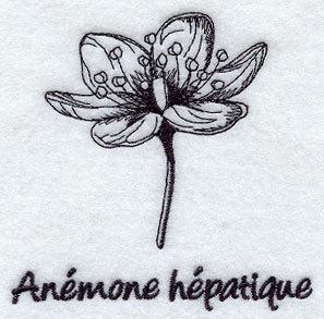 1 Flour Sack Towel - Embroidered Hepatica - Anemone Hepatique