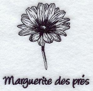 1 Flour Sack Towel - Embroidered Wild Daisy - Marguerite des Pres