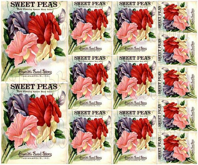 Shabby chic catalog digital Sweet Peas seed packet collage sheets for scrapbook